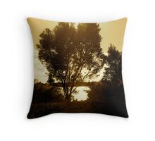 Bronzed view of life Throw Pillow