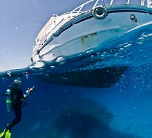 Diver & Boat by bennystoors