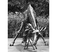 Dikkertje Dap and the Giraffe Photographic Print