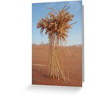méduse du désert Greeting Card