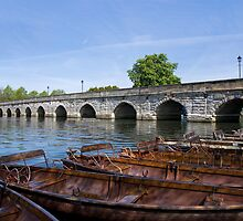Rowing boats by juncha
