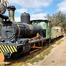THE TRAIN - LOCOMOTIVE CLARA by Magriet Meintjes