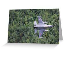 F16 Greeting Card