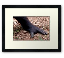 Precious Foot Framed Print