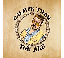 Calmer Than You Are. Photographic Print