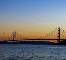 Golden Gate Sunset by Mangaba