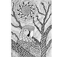 Arara bird and sun in nankin ink Photographic Print