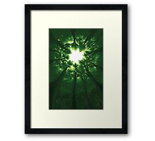 Tree Cathedral Framed Print
