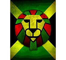 Rasta Lion. Photographic Print