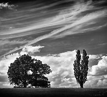 Warlies Park by Lea Valley Photographic