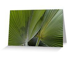 Palm world Greeting Card