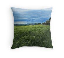 Kentstone Hedgerow Throw Pillow