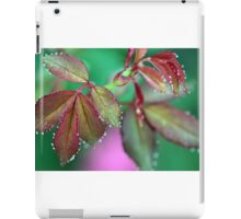 Morning Dew Drops iPad Case/Skin