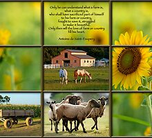 Love of Farm, Love of Country by Bonnie T.  Barry
