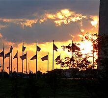 Flags of Washington Monument by Mary Kaderabek-Aleckson