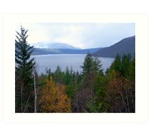 Near Salmon Arm Art Print