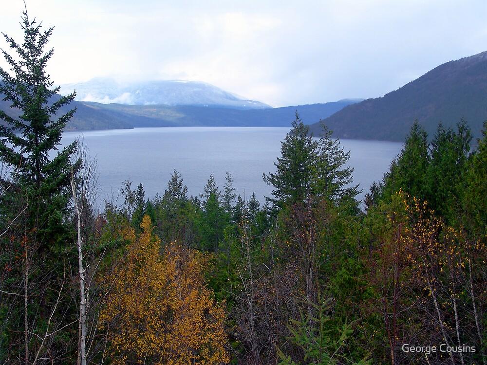 Near Salmon Arm by George Cousins