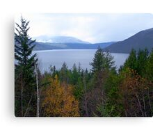 Near Salmon Arm Canvas Print