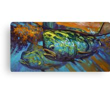 Mahi At Sunset Canvas Print