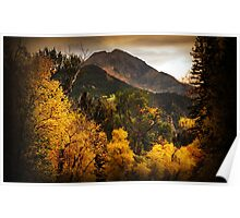 Mount Timpanogos from Road to Tibble Fork Poster