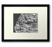 Brachiopod fossils from Usk, Monmouthshire Framed Print