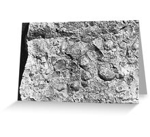 Brachiopod fossils from Usk, Monmouthshire Greeting Card