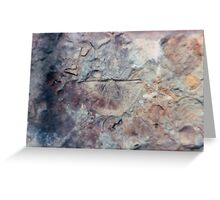 Brachiopod fossil from Usk, Monmouthshire Greeting Card