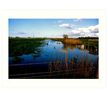 Marshes ....Stockland Bristol Art Print