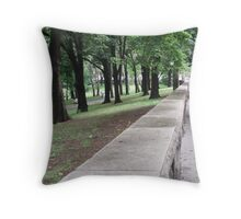 Park Wall Throw Pillow