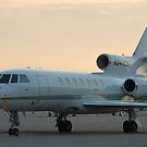Falcon 50 by HoltPhotography