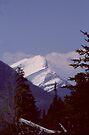 Jasper National Park Snowcap by Allen Lucas