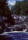 Montreal River Northern Ontario 1981 by Allen Lucas