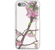 Buds of Spring iPhone Case/Skin