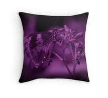 Butterfly in Purple Throw Pillow