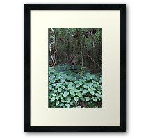The Fairies Hole Framed Print