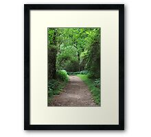 The Enchanted Path Framed Print