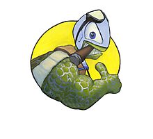 The Silver Turtle Photographic Print