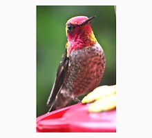 NATURES COLORING BOOK MALE ANNA'S HUMMINGBIRD Unisex T-Shirt
