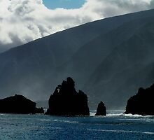 Madeira by Christopher Biggs