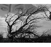 tree vision Photographic Print