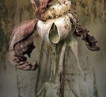 Rust 'n Roses ~ #2 by Rosalie Dale