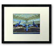 Blue Angels Jets #2 Framed Print