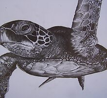 close up of sea turtle #2 pencil by perfectpencil