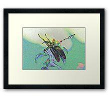 colourful macro dragonfly on leaf  Framed Print