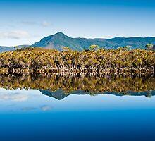 Melaleuca Range by Peter Jarvis