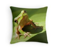 Hey what Throw Pillow