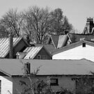 ROOFS by goddarb