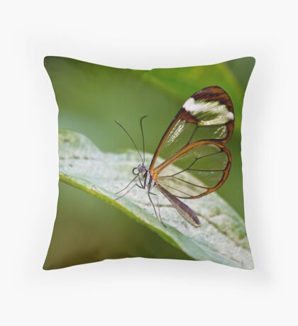 Glass Wings Throw Pillow