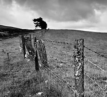 The Ochil Series - Winds and Fences by Kevin Skinner