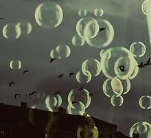Birds in the sky by Madalina Simona